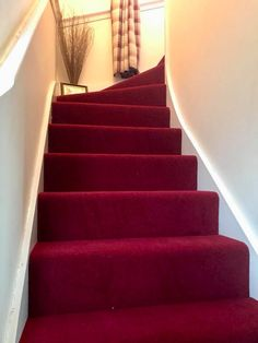 Lovely installation of Adams fine Worcester twist colour rose berry red fit. Lovely installation of Adams fine Worcester twist colour rose berry red fitted to this hall, s Wood And Carpet Stairs, Striped Carpet Stairs, Patterned Stair Carpet, Striped Carpets, Dark Carpet, Modern Carpet, Tartan Carpet, Stairs Colours, Staircase Remodel