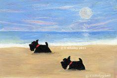 Scotties on the Beach