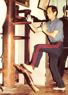 ~Ip Chun - Muk Yan Jong~
