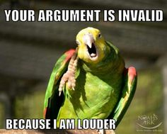 15 LOL Parrot Memes For You to Enjoy - World's largest collection of cat memes and other animals Parrot Pet, Parrot Toys, Parrot Bird, Caique Parrot, Parrot Rescue, Funny Birds, Cute Birds, Funny Animals, Cute Animals