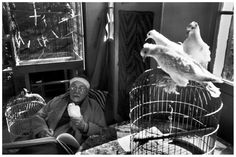 Comrade Cartier-Bresson: the great photographer revealed as a ...