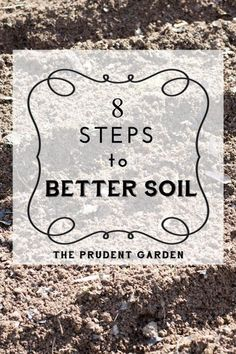 Soil building is a never ending job, and should be considered the primary job, for gardeners. If you want better soil, here's how to get there.