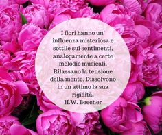 Quote by H.W. Beecher  #quotes #quote #aforismi #nature #natura #flowers #citazioni #naturequotes #HWBeecher
