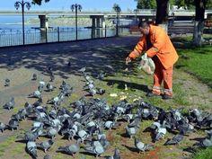 Çöplerden topladığı yiyecekler ile kuş ve sokak hayvanlarını besliyor. Detaylar ajanimo.com'da.. #ajanimo #ajanbrian #hayvan #animal #bird #kuş