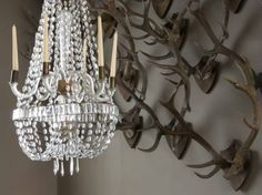 Fairhope Supply Co.: Decorating with Bubba's Antlers