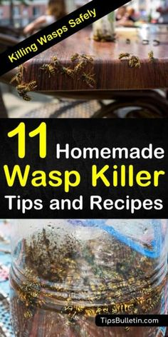 Want to know how to get rid of wasps including yellow jackets from around your house if a water spray isnt doing the job? If youre looking for environment-friendly home remedies check out our 11 homemade wasp killer tips and recipes: Wasp Trap Diy, Wasp Traps, Homemade Wasp Trap, Bee Killer, Wasp Killer, Yellow Jacket Trap, Yellow Jackets, Killing Wasps, Killing Bees