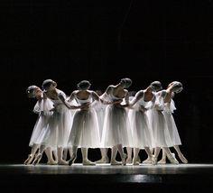 "In 2004 the artistic director of ""New Georgian Ballet of Tamaz Vashakidze"" theatre of modern dance Tamaz Vashakidze produced the ballet ""The Big Waltz"" to the music by Johann Strauss."