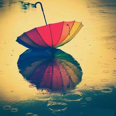 Rainbow Umbrella and Reflection in the Rain.