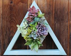 Browse unique items from SucculentWonderland on Etsy, a global marketplace of handmade, vintage and creative goods.