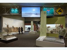 """Changing California"" — Gallery of California Natural Sciences"