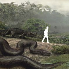 Titanoboa: Monster Snake fed on 25 foot long crocodiles.  Maybe Syfy original movies are not that far off.