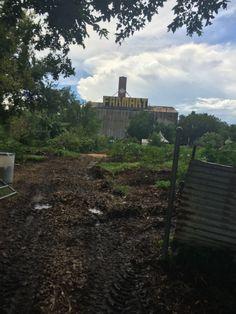 Soil/Farmart landscape