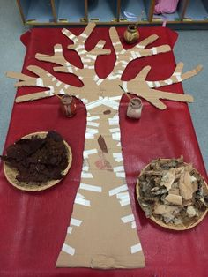Autumn activities for Preschool Beautiful provocation at Robina Scott Kindergarten