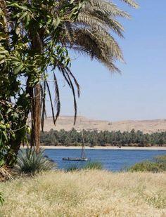 Sur les bords du Nil près de Assouan Photo de Jeremy Guerard - #easyvoyage #clubeasyvoyage #easyvoyageurs #holiday #vacances #travel #traveler #traveling #holidaytravel #letsgo #lovetravel #aventure #adventure #inspiration #evasion #word #trip