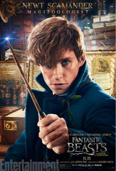 Fantastic Beasts And Where To Find Them Get Character Posters