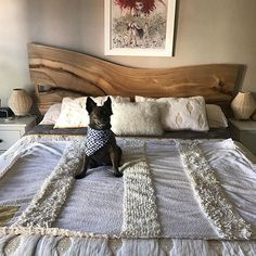 bed headboards headboards and beds on pinterest. Black Bedroom Furniture Sets. Home Design Ideas