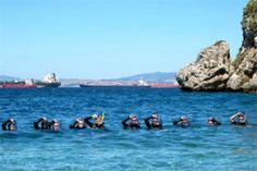 Simply Diving : SIMPLY DIVING is the Costa del Sol's most-established British-run 5 Star Instructor Development Dive Resort – the highest award PADI gives to any div...