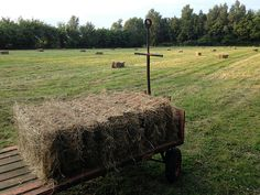 COLLECTING THE BALES OF HAY FROM THE BIG MEADOW