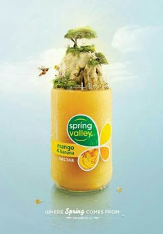 Spring Valley Where Spring Comes From 2 Creative Examples of Beverage/Drinks Advertising Clever Advertising, Print Advertising, Advertising Campaign, Print Ads, Crea Design, Ad Design, Graphic Design, Exhibit Design, Booth Design