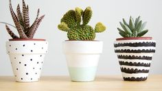 Header_image_article_main-diy_creative_ways_to_decorate_flower_pots