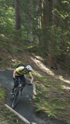 Auf neuen Pfaden den Wald entdecken - obwohl, viel Zeit zum Umsehen hat man nicht beim downhill mountainbiken. Genuss pur ist die Abfahrt des neuen Knappen-Trails in Leogang trotzdem. Tours, Woodland Forest, Viajes