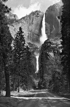 Black and White Photography Ansel adams, yosemite park Yosemite National Park, National Parks, Creative Photography, Nature Photography, Travel Photography, Ansel Adams Photography, Black And White Landscape, Sierra Nevada, Photo Black