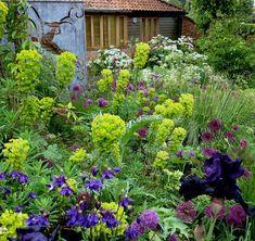 Sue Townsend Garden Design