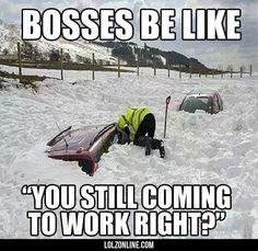 Bosses During The Harsh Winter#funny #lol #lolzonline