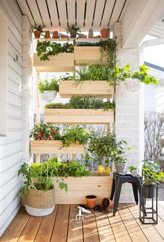 Atrium Garden, Farm Gardens, Balcony, Deco, Plants, Pallet, Gardening, Dreams, Nails