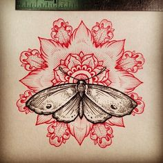 mandala with moth-change it to butterfly