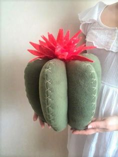 Handmade Cactus pillow Decorative pillows Plushie Cactus decor