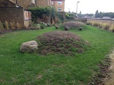 Millshot Close Playscape, Hammersmith, Groundwork London - Playscapes