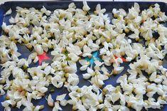 Dulceata din flori de salcam reteta veche a bunicii | Savori Urbane Snack Recipes, Snacks, Urban, Plants, Canning, Snack Mix Recipes, Appetizer Recipes, Appetizers, Plant