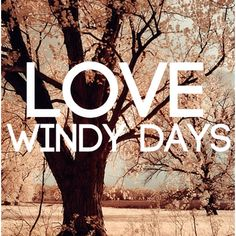 I DO NOT love windy days, but somebody out there must so please pin it and enjoy.