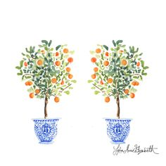 Twinning Orange Trees by Lydia Marie Elizabeth on Artfully Walls : Best friends forever, these orange trees were painted in watercolor on paper. Best friends forever, these orange trees were painted in watercolor on paper. Watercolor Trees, Watercolor Artwork, Beach Watercolor, Tree Illustration, Watercolor Illustration, Orange Blossom, Tree Art, Christmas Tree Decorations, Painting Inspiration
