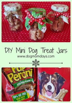 #TreatThePups with mini DIY dog treat jars! http://wm6.walmart.com/treat-your-pups-holiday.aspx