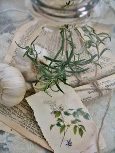 Etichette con erbe - Etiquettes avec herbes - Hand made tags for herbs