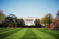 Low angle view of the White House, Washington DC, USA - Glowimages/Getty Images