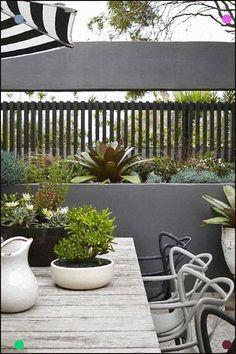 Vertical Gardens A rooftop garden in Bondi. Rooftop Garden, Balcony Garden, Small Gardens, Outdoor Gardens, Vertical Gardens, Masters Chair, Small Garden Design, Fence Design, Patio Design