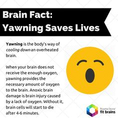 Did you know yawning gives your brain oxygen? #fact #health