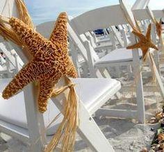 starfish chair decorations