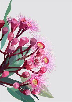 Flowering gum wall art by Australian artist Lamai Anne. Bring the Australian outdoors into your home. Australian Painting, Australian Artists, Flower Mural, Flower Art, Art Floral, Watercolor Flowers, Watercolor Art, Australian Native Flowers, Australian Wildflowers