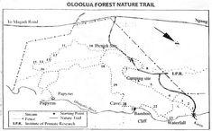 Oloolua Nature Trail 640x400
