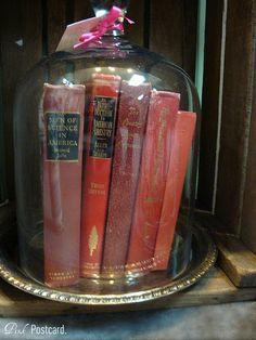 Put books in a cloche??? @Jill Ruskamp