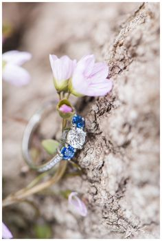 Beaver-Pond-Engagement-Session-Ottawa-Stephanie-Beach-Photography-ring-spring-beauty