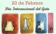 #DíainternacionaldelGato #cats
