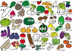 野菜群 沢山の野菜 野菜の名称図 イラスト