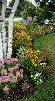 Flower Bed Plants, Flower Beds, Cottage Garden Design, Nature Hd, Garden Borders, Front Yard Landscaping, Garden Projects, Garden Inspiration, Beautiful Gardens