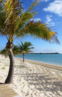 Blue skies and white sandy beaches =