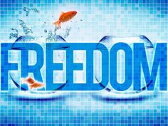 Meet the Freedom Uprising crew, get awesome social business training, and learn what lifestyle freedom is all about…